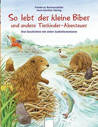So lebt der kleine Biber und andere Tierkinder-Abenteuer: Drei Geschichten mit vielen Sachinformationen: