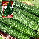 CWAIXX Farmer es vier Jahreszeiten Gartenterrasse im Frühjahr Gemüse Samen säen Gemüsesamen eingemachte Früchte Erdbeere Lauch und Koriander, Gurke