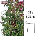 Busch und Strauchstütze 20 Stk. 35 x 40 cm 10044 von bellissa bei Du und dein Garten