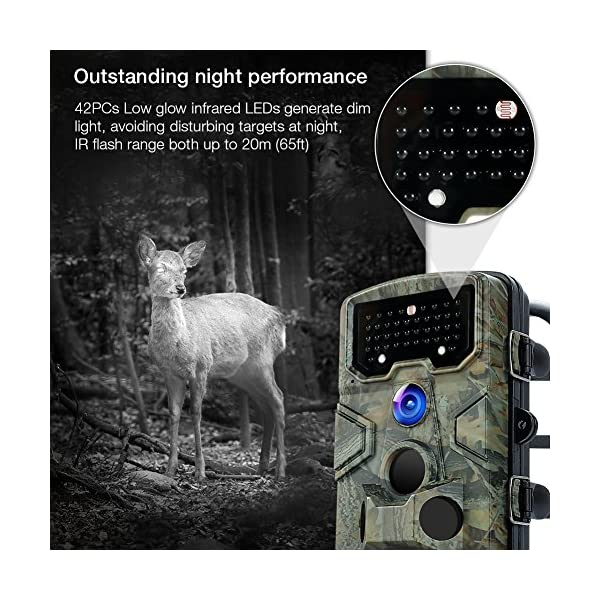 APEMAN Trail Camera 12MP 1080P Great Waterproof Hunting & Wildlife Camera with 120° Wide Angle 44 Pcs IR LEDs Night Version up to 20M/65FT