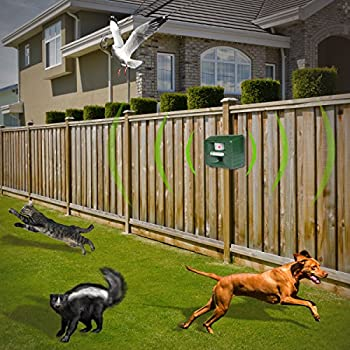 Yard Sentinel RC - Repulsif Ultrason de Jardin 1500m2 - Repulsif Chat, Repulsif Chien, Repousse Animaux Ultrason
