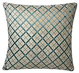 Diseño Terciopelo de Chenilla Criss Cross Compruebe 17 x 17 pulgadas Fundas de cojín para sofá cama Sofá (Beige y Azul)
