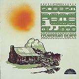 Songtexte von Robert Pete Williams - Louisiana Blues
