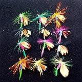 Findingway 12 Stück Trocken Fliegen Köder Fliegenfischen Forellen Köder Angel Imitate Kunstköder Saibling Spezial Regenbogenforelle
