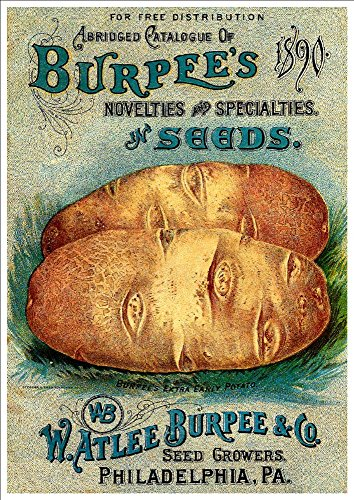 watlee-burpee-co-abridged-catalogue-of-novelties-specialties-in-seeds-1890-a4-glossy-art-print-taken