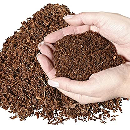 Humusziegel 1 block- 70 Coconut Litter for Reptiles, Terrarium Substrate, Terrarium Bedding, Ground Coconut, Tortoise… 5