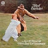 An Old Raincoat Won't Ever Let You Down (Lp) [Vinyl LP]