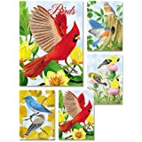 Birds - Box Set of 20 Assorted Note Cards and Envelopes by Julia Bell