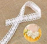 15M Vintage Spitzenband Borte Weiss aus Baumwolle Absofine Dekoband Zierband Spitzenstoff Spitzenborte für Nähen Handwerk Hochzeit Deko Scrapbooking Geschenkbox