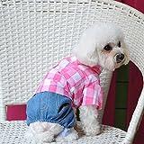 "spritech (TM) Herbst Haustier Hund Kleidung Rüschen Short Sleeve Dress Shirts, blau, M(clothes length:9"")"