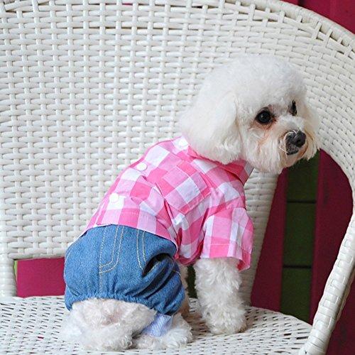 spritech-tm-otono-mascota-perro-ropa-de-volantes-vestido-de-manga-corta-camisas-azul