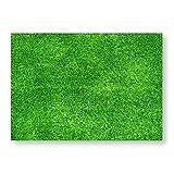 100 Tischunterlagen in Rasen-Optik I DIN A3 eckig I Platzset aus Papier in grün I Fußball Fan-Artikel Natur Wiese I Einweg Tischset I dv_331