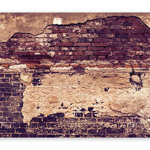 murando - XXL Fototapete 500x280 cm - Größe Format - Vlies Tapete - Moderne Wanddeko - Design Tapete - Wandtapete - Wand Dekoration - Ziegel Ziegelstein f-A-0503-x-d