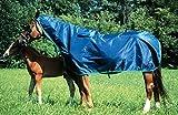 Regendecke mit Halsteil ***' Sonderangebot, wasserabweisend mit Rückennaht