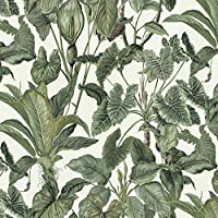 9667-21 Erismann Purple//Black Floral Flower Leaf Trail Wallpaper