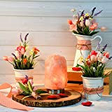 from Levoit Levoit Elora Himalayan Salt Lamp, 3.5 - 5 KG, Hand Carved Natural Glow Pink Therapeutic Sea Salt Crystal Rock Lamps: Stainless Steel Base, Touch Brightness Dimmable Control, 2 Bulbs, UL-Listed Cord Included