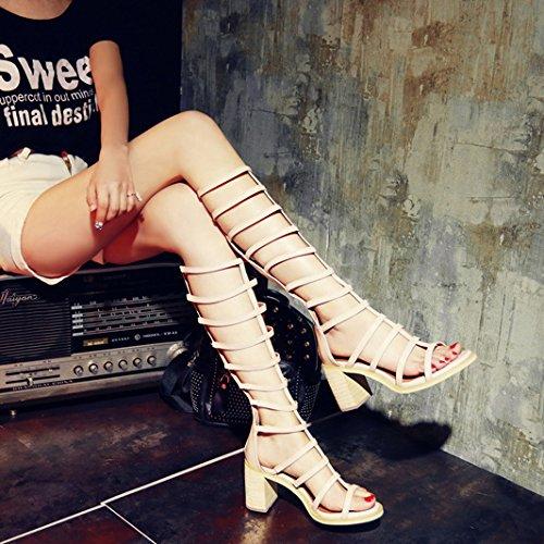 i sandali con le cinghie tacco barile femmina. scarpe da punta lungo cilindro - piccolo grande scarpe e stivali albicocca