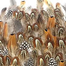 Coceca 300pcs plumas manualidades mixtas de gallo, utilizada para diversas fiestas de cumpleaños, bodas