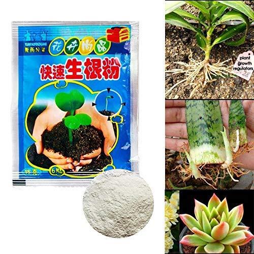 Blumen Fur Bag (Konglyle Rapid Verwurzlung Pulver Agent, für Obst Baum Schneiden Blumen Pflanzen 10 Bags)