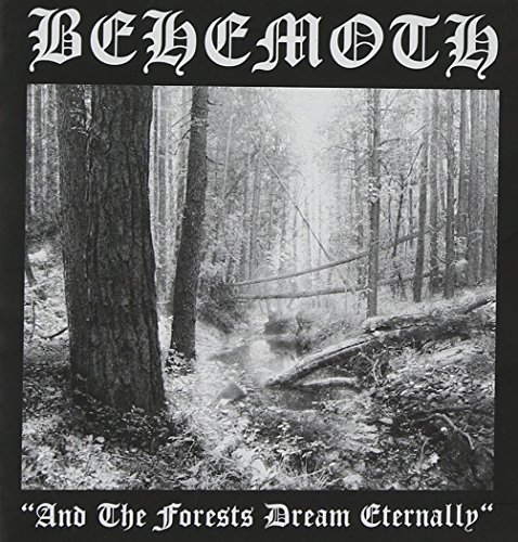 And the Forest Dream Ete