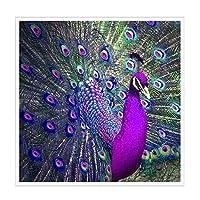 Jatidne 5d Diamond Painting Kits Full Drill 30cm x 30cm Diy Peacock Diamond Art Embroidery for Home Wall Decal (peacock)