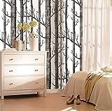 KADUNDI Birken-Tapete für Wohnzimmer Schlafzimmer TV Hintergrund (20,86 '' x 393,7 '')