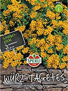 Würz- Tagetes SPERLING´s Hot Mexican