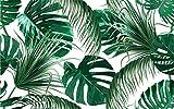 Carta Da Parati In Tessuto Non Tessuto - la carta da parati e piante tropicali a foglia muro tridimensionale Moderna Fotomurali 3D Immagini Da Parete