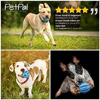 Chien de jouet de PetPäl en caoutchouc naturel - Caoutchouc pour chien - en caoutchouc robuste Balle de jeu pour chien - Jouet à mâcher - pour grand & petit chien - Balle pour chien