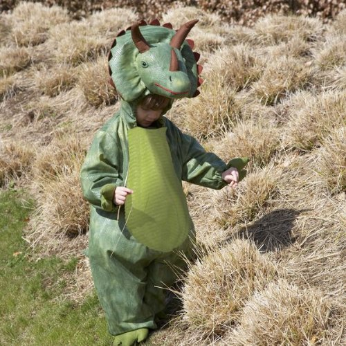 Deluxe Triceratops Dinosaur fancy dress up BNWT 18m-5yrs Halloween Kostuem (2-3 Jahre)
