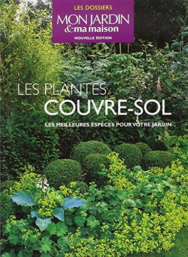Les plantes couvre-sol : Les meilleures espces pour votre jardin
