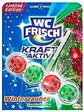 WC Frisch Kraft-Aktiv Duftspüler Winterzauber Tannenfrische - Limitierte Edition, 10er Pack (10 x 50 g)