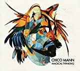 Songtexte von Chico Mann - Magical Thinking