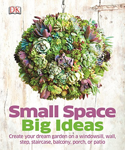 Small Space Big Ideas (Dk)