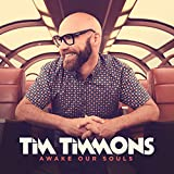 Songtexte von Tim Timmons - Awake Our Souls