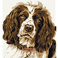 Springer Spaniel NO3 kit punto croce
