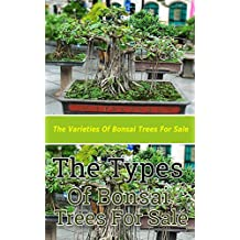 The Types of Bonsai Trees for Sale: The Varieties of Bonsai Trees for Sale (English Edition)
