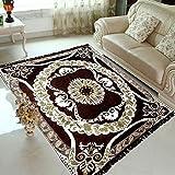 #3: larsph's Ethnic Velvet Touch Abstract Chenille Carpet - 5 X 7 Feet, Coffee