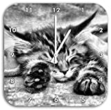 Monocrome, Baby Cat, red bedspread ,, clock diameter 28cm with black pointed the hands and face, decoration items, Designuhr, aluminum composite very nice for living room, study