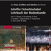 Die Abbildungen des Buches: Scheffer/Schachtschabel: Lehrbuch der Bodenkunde