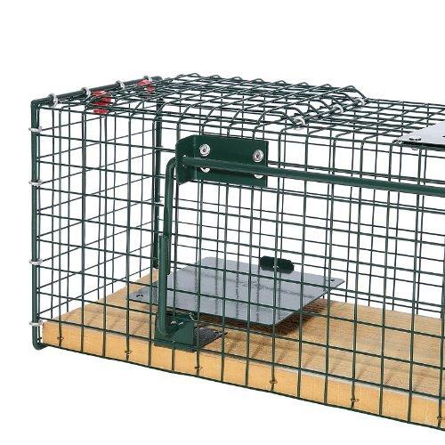 Moorland Safe 6041 Lebend-Falle 55x15x19cm cm mit Holzboden als stabile Tierfalle für z.B Ratten, Marder, Iltis, Katzen