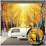GREAT ART Foto Mural Otoño Dorado Decoración de Pared Bosque y Paisaje Imagen de Camino en Autumn (336 x 238 cm)