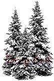 Deep Red Stamps Tief Rot Briefmarken Schaumstoff selbst 2Zoll x 3-inch-winter Pines