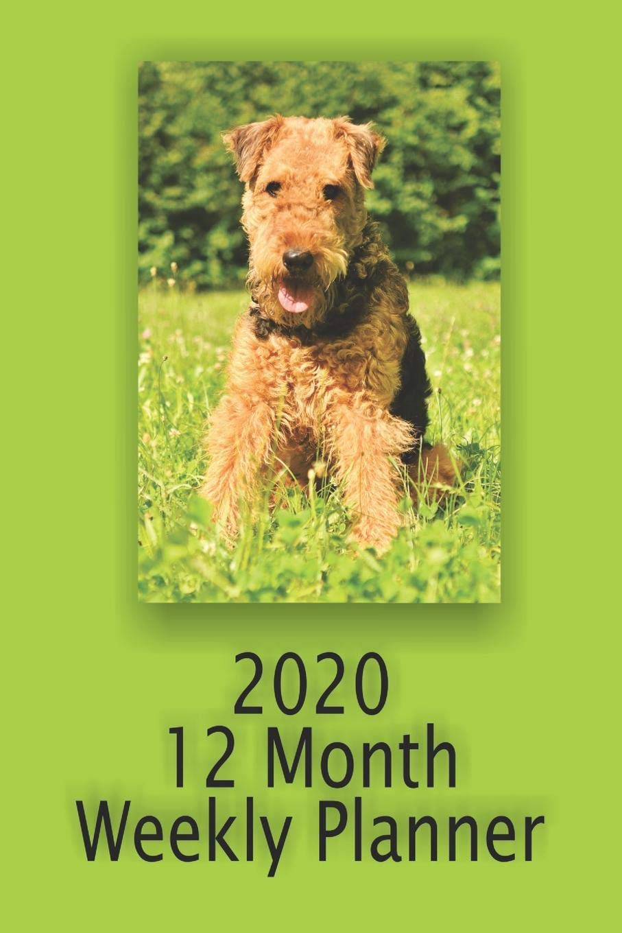 2020 12 Month Weekly Planner: 1 Year Daily/Weekly/Monthly Planner, January 1,2020-December 31, 2020, Airedale Terrier…