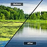 HYDRA Blanket Weed & String Algae Treatment for Lake and Larger Pond Water LAKE CLEAR 25KG 7