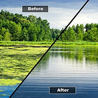 HYDRA Blanket Weed & String Algae Treatment for Lake and Larger Pond Water LAKE CLEAR 25KG 3