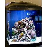 sera 31100 marin Biotop Cube 130 ein 130 l Meerwasser-Komplettaquarium mit PL-T5 Beleuchtung und Filtration - 6