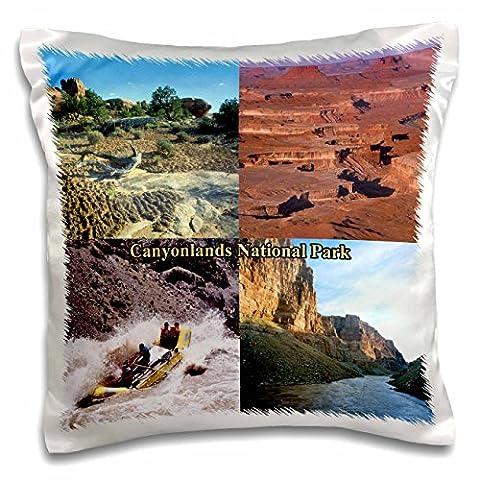 Sandy Mertens Utah - Soil Crust, Green River Overlook and