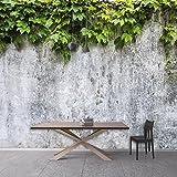 Wongxl Ein Großes Wandbild-Landhausstilrestaurant Ist Die Betonmauer Der Wohnzimmersofa-Schlafzimmertapete 3D Tapete Hintergrundbild Fresko Wandmalerei Wallpaper Mural 200cmX150cm