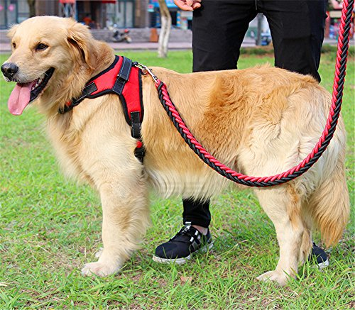 seaNpem Hunde, robust, Weste, Leine Halsband, verstellbar, Hund mit Halter Martingale Hundehalsband, geflochten, zum Überziehen, Metall-Clip, für die Sicherheit anti-twist Haustier-mit Spitze (Leine-halter Metall)